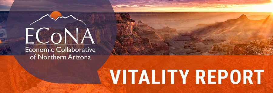 Vitality Report logo